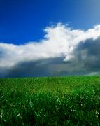 Field. Cloud Photo Prints - Grassy Field, Ireland Print by The Irish Image Collection