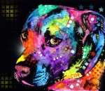 Colorful Mixed Media Prints - Gratitude Pitbull Print by Dean Russo