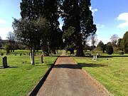 Grave Photo Originals - Graves Path by Shaun Mullard