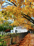Graveyard In Autumn Print by Susan Savad