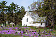 Purple Phlox Framed Prints - Graveyard Phlox Country Church Framed Print by John Stephens