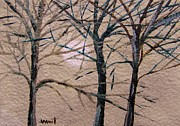 Subtle Drawings - Gray and Dark Trees by John  Williams