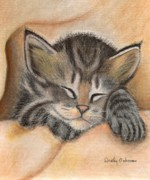 Furry Pastels - Gray Striped Sleeping Kitten by Dorothy  Oakman