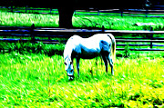 Grazing Horse Digital Art Posters - Grazing Horse Poster by Bill Cannon