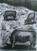 Cows Drawings Posters - Grazing in a field Poster by Lee Davies