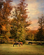 Grazing In Autumn Print by Jai Johnson