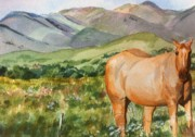 Grazing Horse Originals - Grazing in Taos by Peggy Ellis