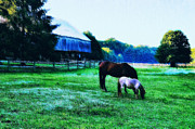 Grazing Horse Digital Art Posters - Grazing in the Meadow Poster by Bill Cannon