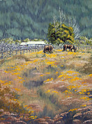 Kurt Jacobson - Grazing