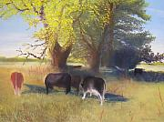 Pasture Pastels Framed Prints - Grazing Near the Shade Tree Framed Print by Jackie Bush-Turner