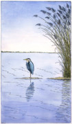 Bay Mixed Media Posters - Great Blue Heron Poster by Charles Harden