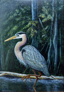 Framed Bird Prints Painting Prints - Great Blue Heron Print by David Tabor