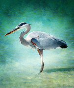 Graceful Digital Art - Great Blue Heron by Ellen Lacey