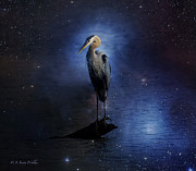 Wildlife Digital Art Prints - Great Blue Heron On A Starry Night Print by J Larry Walker