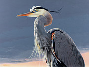 Close Up Painting Metal Prints - Great Blue Heron Metal Print by Shawn Shea