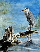 Great Blue Heron Paintings - Great Blue Heron  by Sibby S