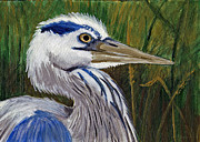 Great Painting Originals - Great Blue Heron by Tricia Griffith
