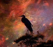 Layered Digital Art Prints - Great Blue Heron Viewing The Cosmos Print by J Larry Walker