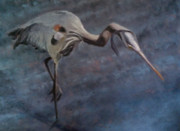 Wendie Thompson - Great Blue Heron