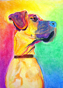 Great Dane Portrait Prints - Great Dane - Rapture Print by Alicia VanNoy Call