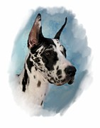 Great Dane Digital Art - Great Dane 284 by Larry Matthews