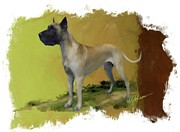Puppy Mixed Media - Great Dane by Donna Johnson
