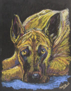 Michele Hollister - for Nancy Asbell - Great Dane Pastel