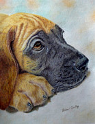 Animal Themes Paintings - Great Dane Puppy by Karen Curley