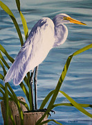 Great Painting Originals - Great Egret by Donna Francis