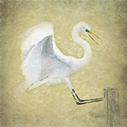 Wood Post Posters - Great Egret in Yellow Poster by Betty LaRue