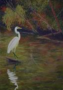 Great Pastels Prints - Great Egret Print by Marion Derrett