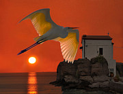 Salt Flats Mixed Media - Great Egret sunset in Skala by Eric Kempson