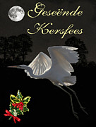 Ellenisworkshop Prints - Great Egrets Christmas in Africa Print by Eric Kempson