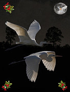 Great Birds Mixed Media Posters - Great Egrets  Poster by Eric Kempson