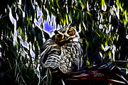 Eucalyptus Digital Art - Great Horned Owl - 4228 - Fractal - S by James Ahn