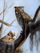 Owl Pastels - Great Horned Owl and Owlet by Deb LaFogg-Docherty