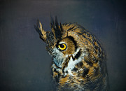 Preditor Metal Prints - Great Horned Owl Metal Print by Betty LaRue