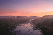 Concord Massachusetts Photo Posters - Great Meadows National Wildlife Refuge Dawn Poster by John Burk