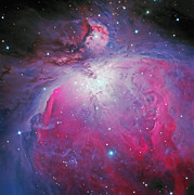 Orion Nebula Framed Prints - Great Orion Nebula Framed Print by Don Goldman