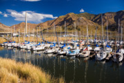 Great Salt Lake Posters - Great Salt Lake Marina Poster by Utah Images