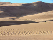 Sand Dunes National Park Prints - Great Sand Dunes National Park 1 Print by Diana Douglass