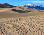 Sand Dunes Posters - Great Sand Dunes National Park 2 Poster by Diana Douglass