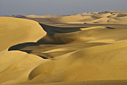 Contours Photos - Great Sand Sea by Michele Burgess