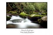Moss Green Framed Prints - Great Smoky Poster Framed Print by Amanda Kiplinger
