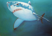 White Shark Painting Prints - Great White 3 Print by Terry Lewey