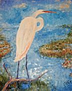 Doris Blessington - Great White Egret