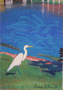Great Pastels - Great White Heron in Maitland by Dana Schmidt