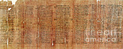 Papyrus Photos - Greek Papyrus Horoscope by Science Source