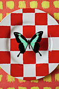 Abstract Bug Prints - Green and black butterfly on red checker plate Print by Garry Gay