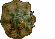 Music Glass Art Originals - Green and Brown Glass Bowl by Jason Pollack